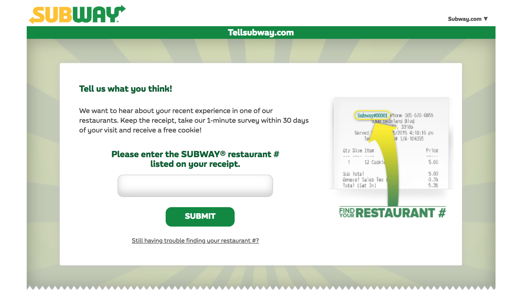 tellsubway survey homepage