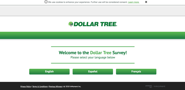 www.dollartreefeedback.com homepage